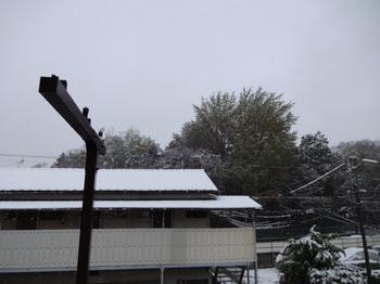 都心で降雪_02.JPG