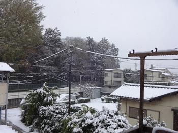 都心で降雪_04.JPG